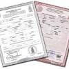 certificado de nacimiento extranjero