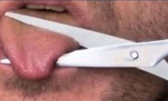 lengua