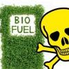 biocombustible