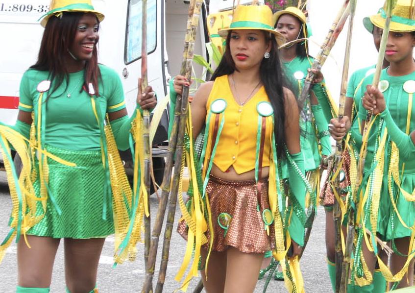 carnaval dominicano 2014