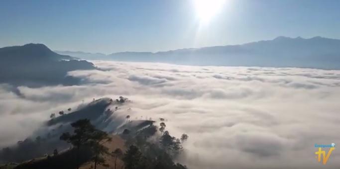 Constanza niebla