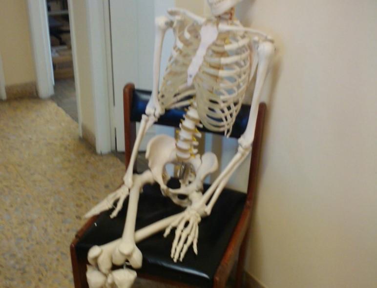 Esqueleto sentado
